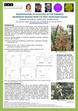 2017 Scharenberg - Poster Sequestration of Nicotine by Orobanche ramosa