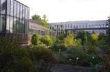 Kiel_Garten
